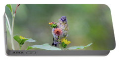 Lesser Goldfinch 4036 Portable Battery Charger