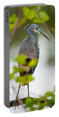 Portable Battery Charger featuring the photograph Little Blue Heron by Christopher Holmes
