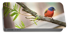Male Painted Bunting Portable Battery Charger