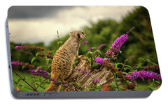 Meerkat Lookout Portable Battery Charger by Martin Newman