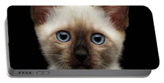 Mekong Bobtail Kitty With Blue Eyes On Isolated Black Background Portable Battery Charger