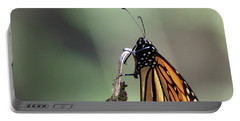 Monarch Butterfly Stony Brook New York Portable Battery Charger