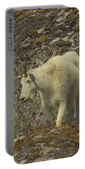 Mountain Goat Ewe Portable Battery Charger
