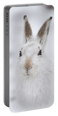 Mountain Hare In The Snow - Lepus Timidus  #1 Portable Battery Charger