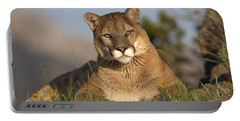Mountain Lion Portrait North America Portable Battery Charger