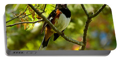 Towhee In Song Portable Battery Charger