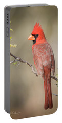 Northern Cardinal Cfh17765 Portable Battery Charger