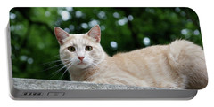 Orange Tabby Portable Battery Charger