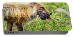 Out Foxed  Portable Battery Charger