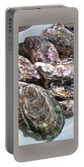 Oyster  Portable Battery Charger
