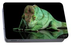 Parson Chameleon, Calumma Parsoni Orange Eye On Black Portable Battery Charger by Sergey Taran