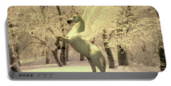 Pegasus Vision Portable Battery Charger