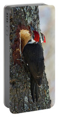 Pileated Whos There Portable Battery Charger