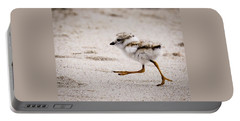 Piping Plover Chick Portable Battery Charger