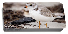 Piping Plover Portable Battery Charger