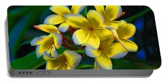 Portable Battery Charger featuring the photograph 1- Plumeria Perfection by Joseph Keane
