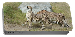 Portable Battery Charger featuring the photograph Poise by Fraida Gutovich