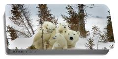 Polar Bear Ursus Maritimus Trio Portable Battery Charger