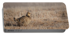 Portable Battery Charger featuring the photograph Prairie Chicken 8-2015 by Thomas Young