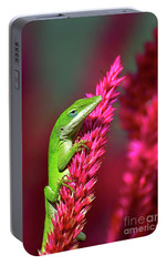 Portable Battery Charger featuring the photograph Pretty In Pink by Kathy Baccari