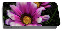 Portable Battery Charger featuring the photograph Purple Gazania by Elvira Ladocki