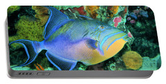 Queen Triggerfish Portable Battery Charger