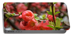 Quince Blossoms Portable Battery Charger