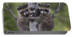 Raccoon Two Babies Climbing Tree North Portable Battery Charger