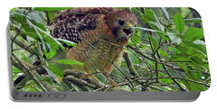 Red-shouldered Hawk Portable Battery Charger