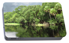 Portable Battery Charger featuring the photograph Reflections by Rosalie Scanlon