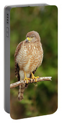 Roadside Hawk Portable Battery Charger