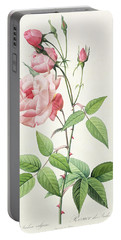 Rosa Indica Vulgaris Portable Battery Charger