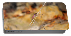 Portable Battery Charger featuring the photograph Fuchsia Fly by Al Powell Photography USA