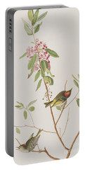 Ruby Crowned Wren Portable Battery Charger by John James Audubon
