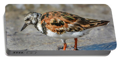 Ruddy Turnstone Portable Battery Charger