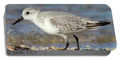 Sanderling Westhampton New York Portable Battery Charger by Bob Savage