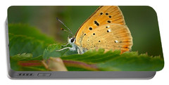 Portable Battery Charger featuring the photograph Scarce Copper by Jouko Lehto