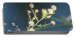 Seed Pod Portable Battery Charger by Donna Brown