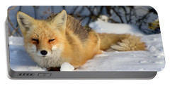 Sleepy Little Fox Portable Battery Charger