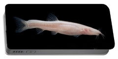Small Headed Cave Loach Portable Battery Charger