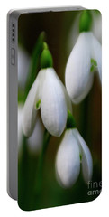 Snowdrops Portable Battery Charger