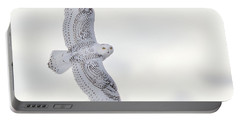Snowy Flyby Portable Battery Charger