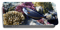Sohal Surgeonfish Portable Battery Charger