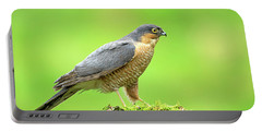Sparrowhawk Portable Battery Charger