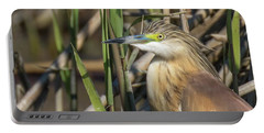 Portable Battery Charger featuring the photograph Squacco Heron - Ardeola Ralloides by Jivko Nakev