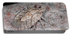Portable Battery Charger featuring the photograph Stink Bug by Breck Bartholomew