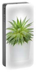 Portable Battery Charger featuring the photograph Succulent Plant by Elena Elisseeva