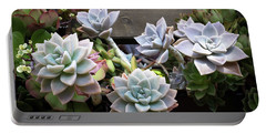 Succulents Portable Battery Charger by Catherine Lau
