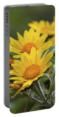 Portable Battery Charger featuring the photograph Sunflowers  by Saija Lehtonen