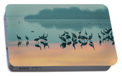 Portable Battery Charger featuring the photograph Sunrise Over The Hula Valley by Dubi Roman